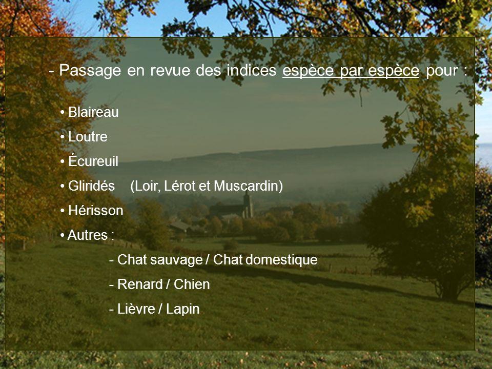 - Passage en revue des indices espèce par espèce pour : Blaireau Loutre Écureuil Gliridés (Loir, Lérot et Muscardin) Hérisson Autres : - Chat sauvage