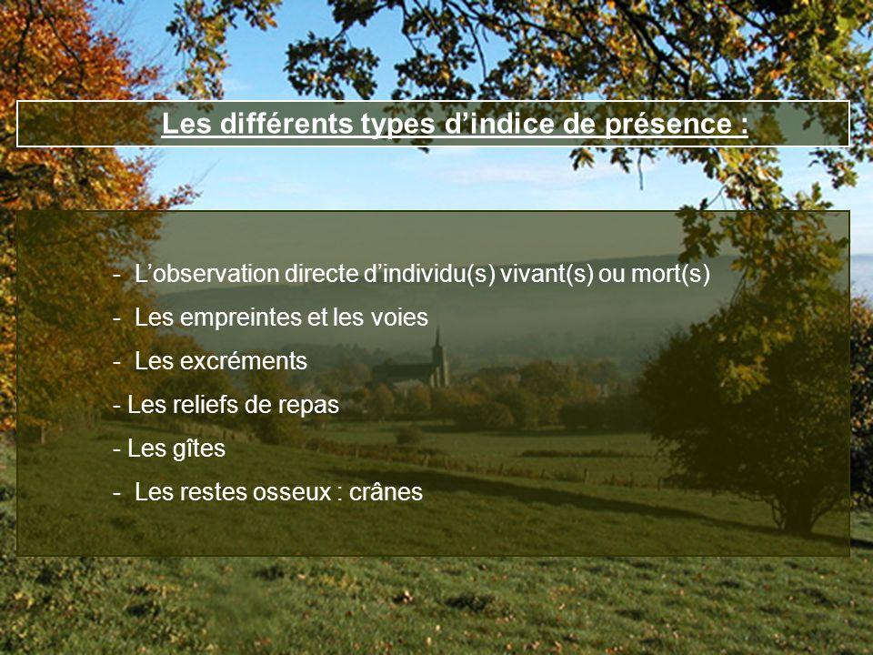 Les différents types dindice de présence : - Lobservation directe dindividu(s) vivant(s) ou mort(s) - Les empreintes et les voies - Les excréments - L