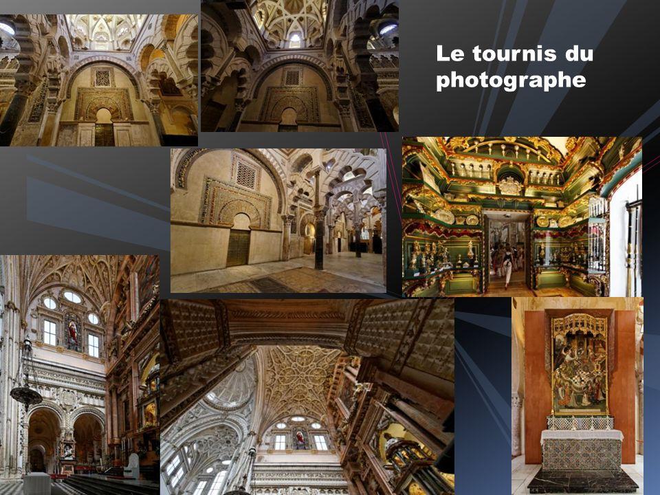 L avant salle du Mihrab « La géométrie des végétaux sur fond doré en mosaïques »