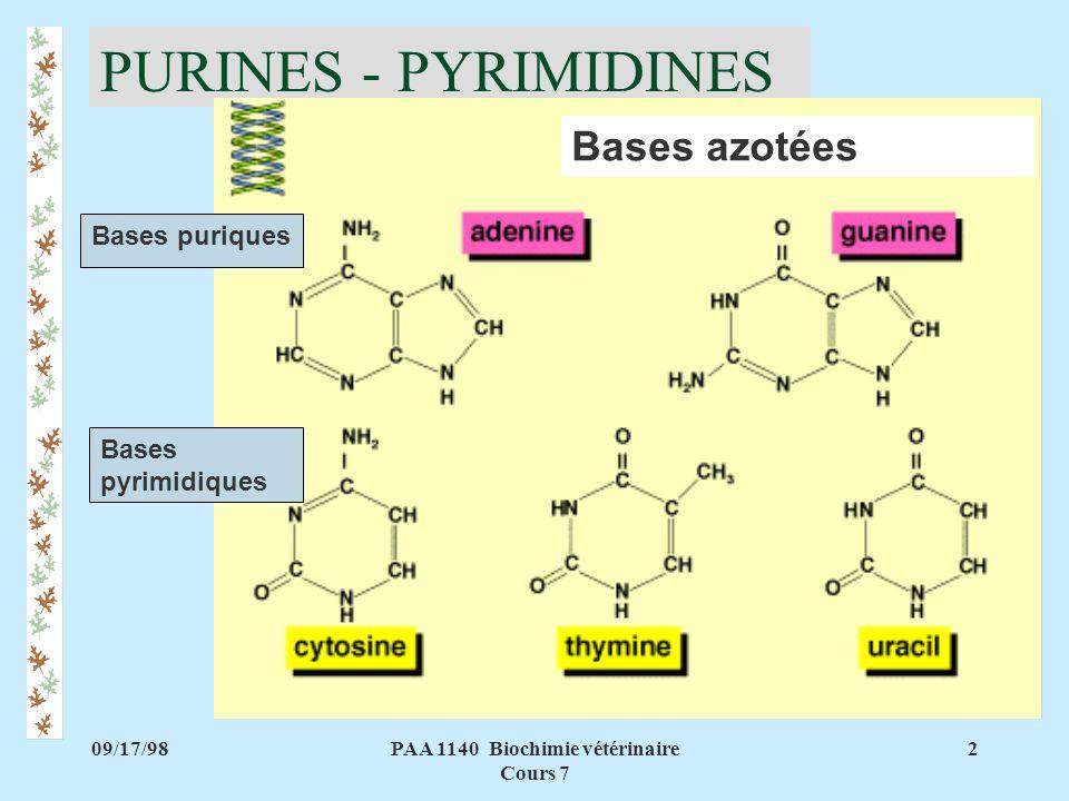 09/17/982PAA 1140 Biochimie vétérinaire Cours 7 PURINES - PYRIMIDINES Bases pyrimidiques Bases puriques Bases azotées