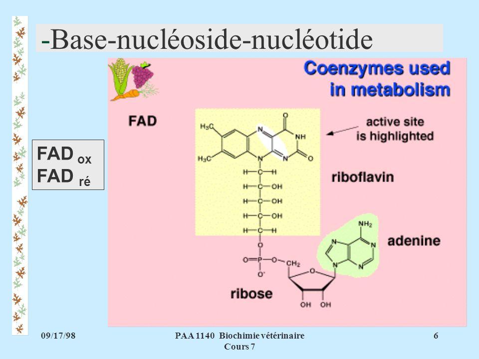 09/17/986PAA 1140 Biochimie vétérinaire Cours 7 -Base-nucléoside-nucléotide FAD ox FAD ré