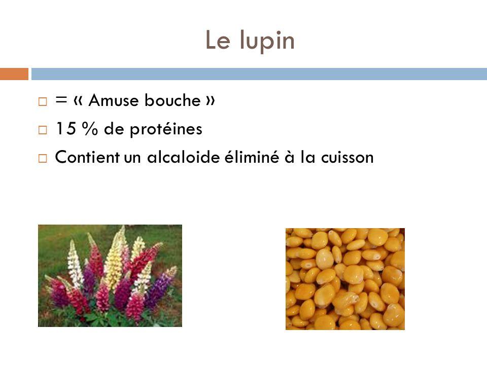 Le lupin = « Amuse bouche » 15 % de protéines Contient un alcaloide éliminé à la cuisson