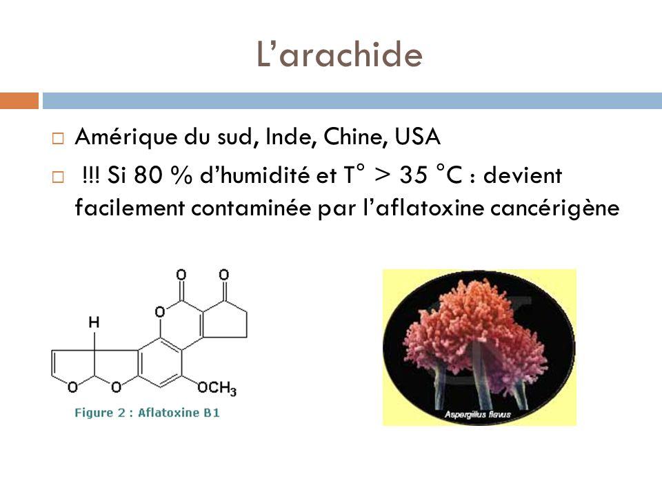 Larachide Amérique du sud, Inde, Chine, USA !!.