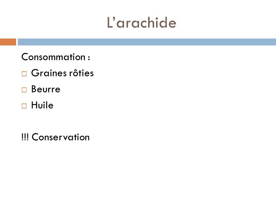 Larachide Consommation : Graines rôties Beurre Huile !!! Conservation
