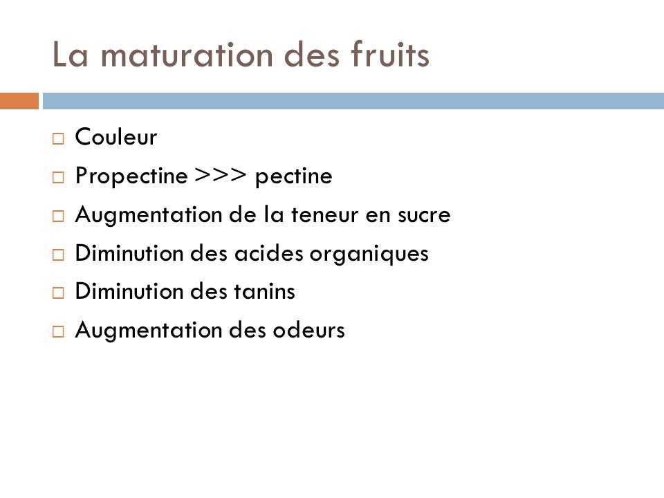 La maturation des fruits Couleur Propectine >>> pectine Augmentation de la teneur en sucre Diminution des acides organiques Diminution des tanins Augmentation des odeurs
