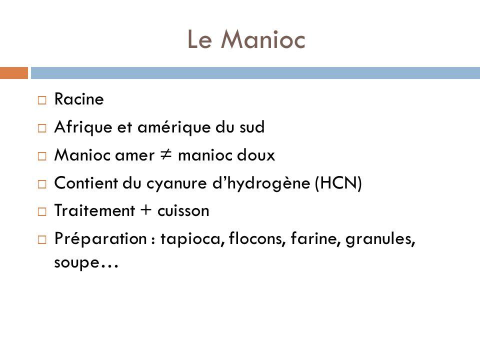 Le Manioc Racine Afrique et amérique du sud Manioc amer manioc doux Contient du cyanure dhydrogène (HCN) Traitement + cuisson Préparation : tapioca, flocons, farine, granules, soupe…