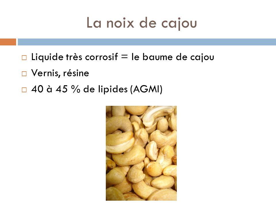La noix de cajou Liquide très corrosif = le baume de cajou Vernis, résine 40 à 45 % de lipides (AGMI)