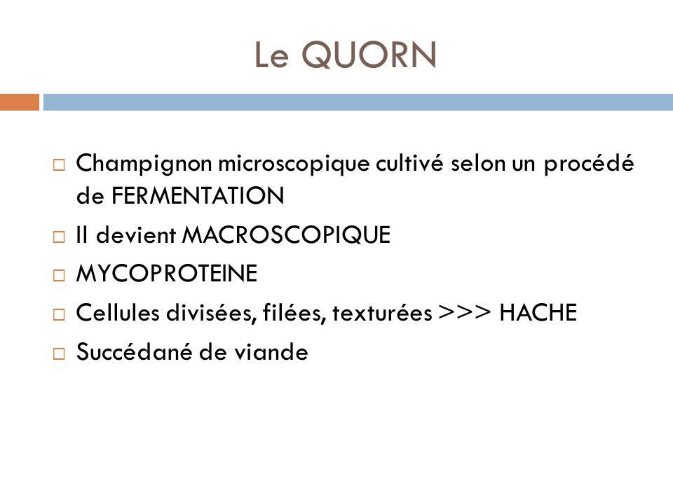 Le QUORN Champignon microscopique cultivé selon un procédé de FERMENTATION Il devient MACROSCOPIQUE MYCOPROTEINE Cellules divisées, filées, texturées >>> HACHE Succédané de viande