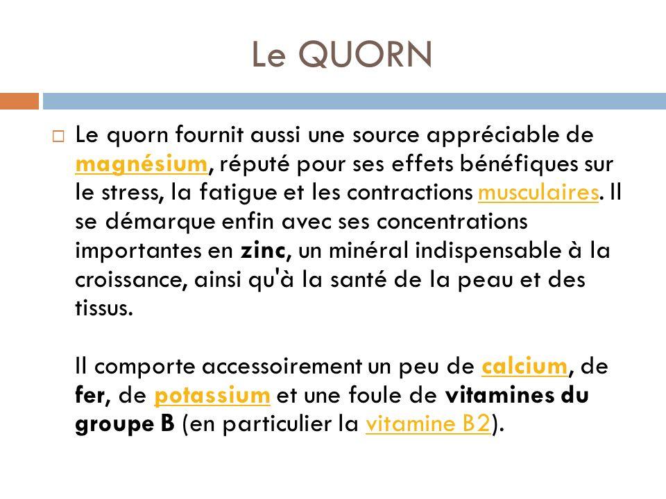 Le QUORN Le quorn fournit aussi une source appréciable de magnésium, réputé pour ses effets bénéfiques sur le stress, la fatigue et les contractions musculaires.