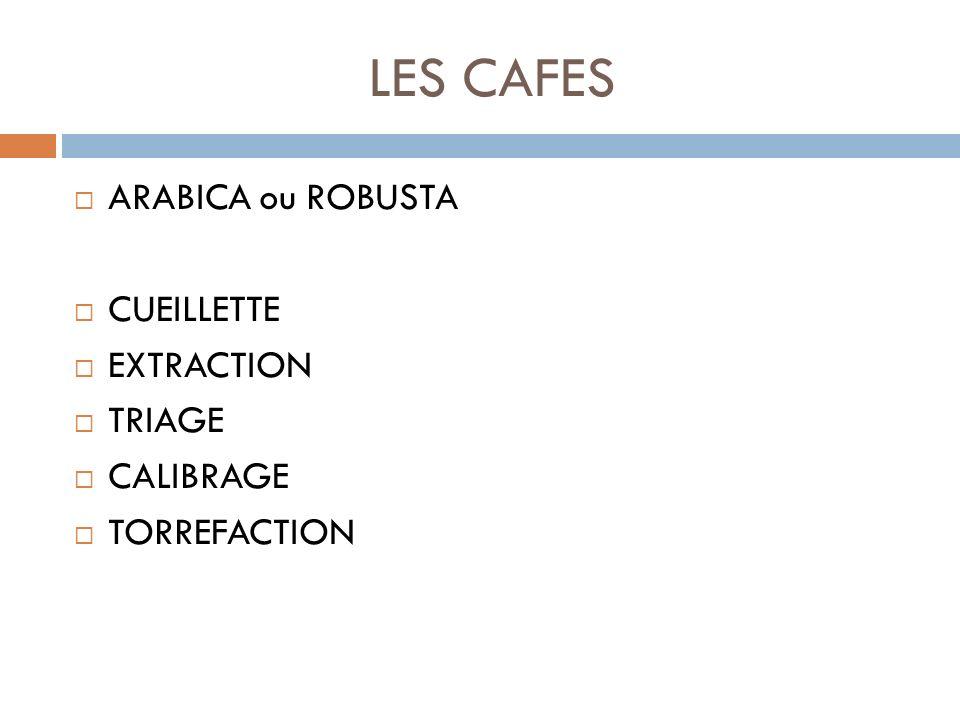 ARABICA ou ROBUSTA CUEILLETTE EXTRACTION TRIAGE CALIBRAGE TORREFACTION