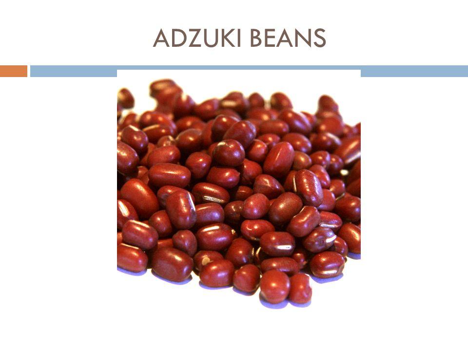 La noix Ecorce vert >>> teinture 14 % de protéines 62 % de lipides (dont 65 % AGMI et 21 % AGPI) 25 % de glucides Substance bactéricide dans la feuille