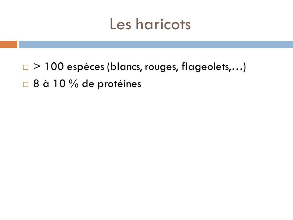 Les haricots > 100 espèces (blancs, rouges, flageolets,…) 8 à 10 % de protéines