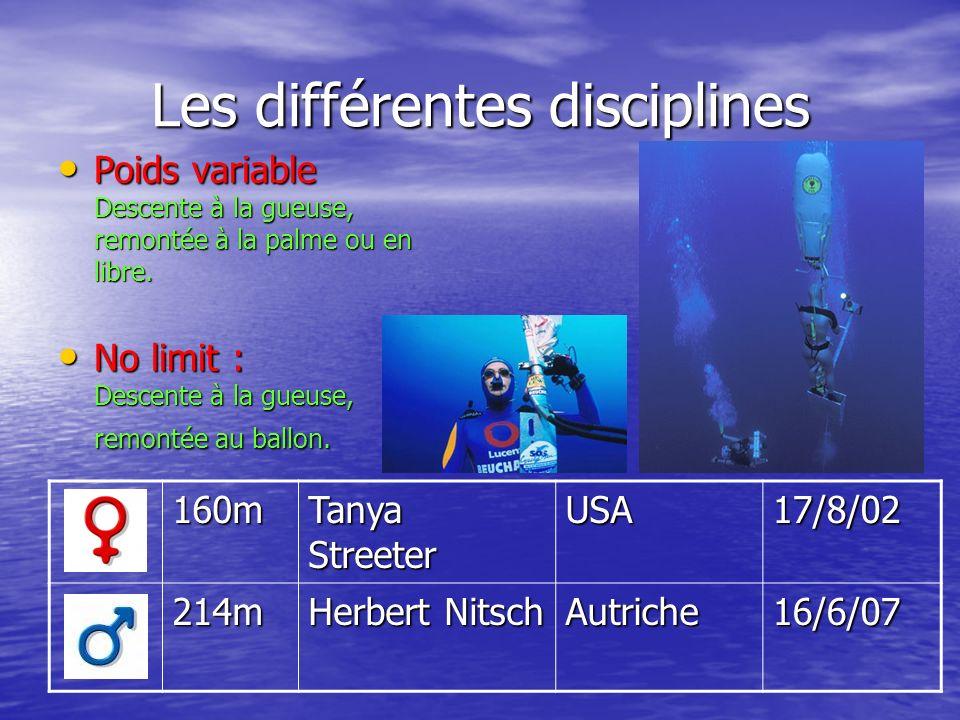 Les différentes disciplines 160m Tanya Streeter USA17/8/02 214m Herbert Nitsch Autriche16/6/07 Poids variable Descente à la gueuse, remontée à la palm