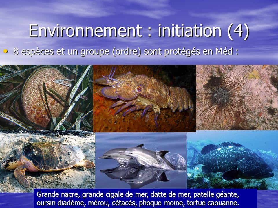 Environnement : initiation (4) 8 espèces et un groupe (ordre) sont protégés en Méd : 8 espèces et un groupe (ordre) sont protégés en Méd : Grande nacr