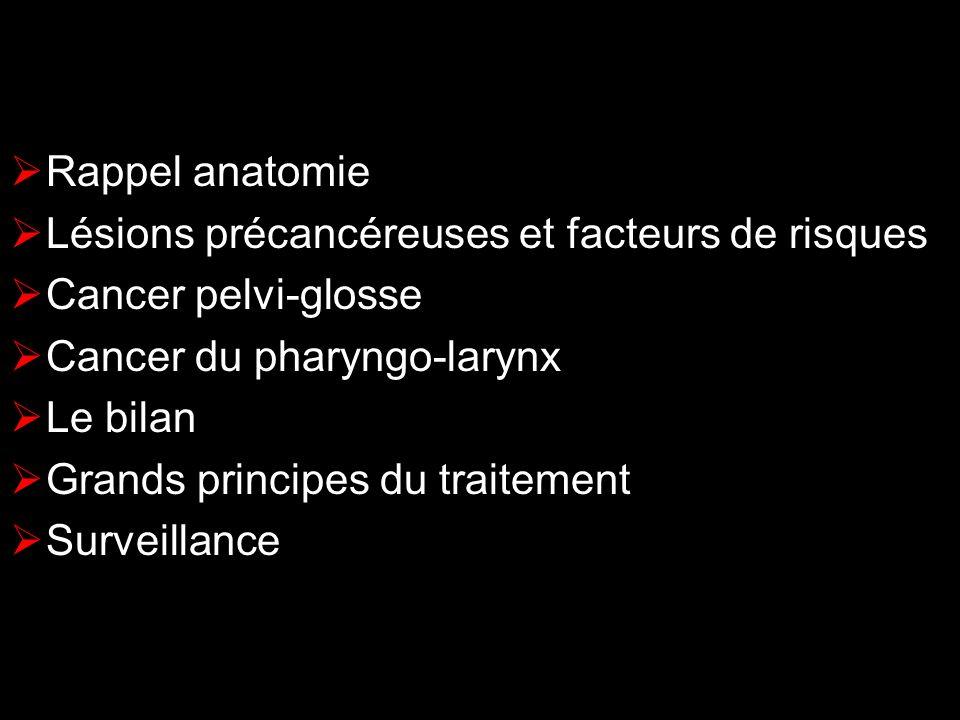 Rappel anatomie Lésions précancéreuses et facteurs de risques Cancer pelvi-glosse Cancer du pharyngo-larynx Le bilan Grands principes du traitement Su
