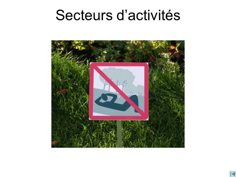 Secteurs dactivités