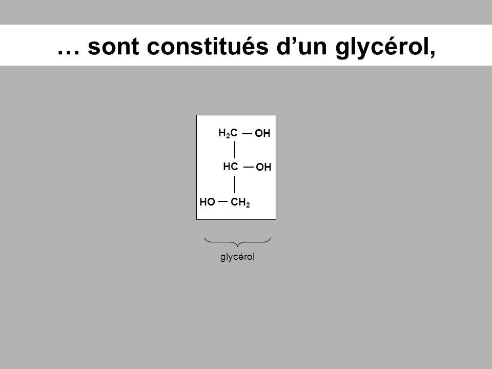 … sont constitués dun glycérol, glycérol HC OH H2CH2C CH 2 OH HO