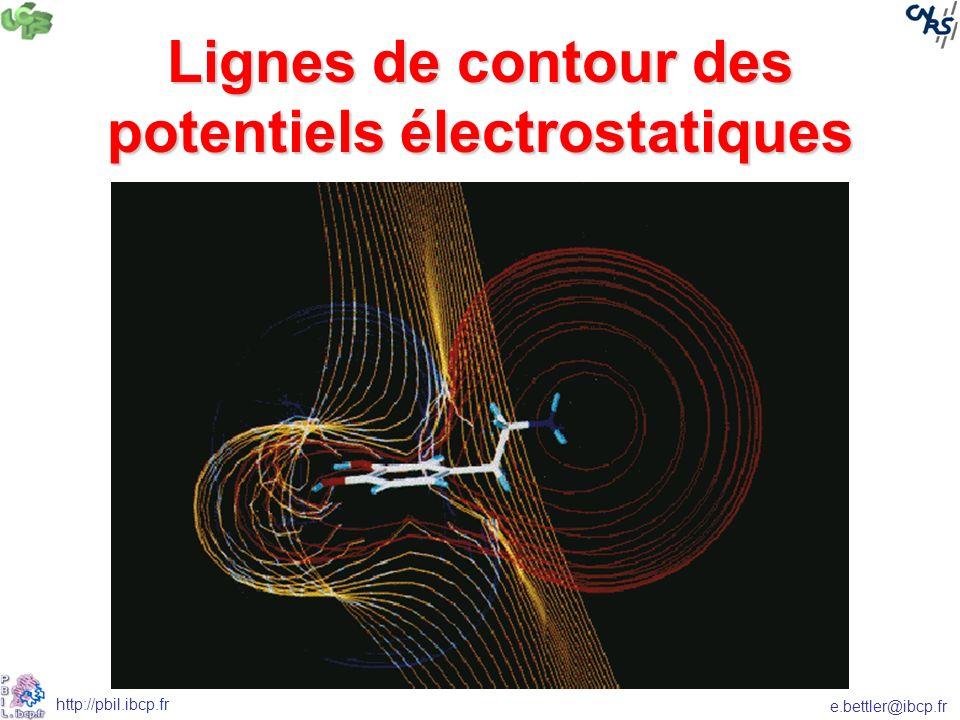 e.bettler@ibcp.fr http://pbil.ibcp.fr Lignes de contour des potentiels électrostatiques