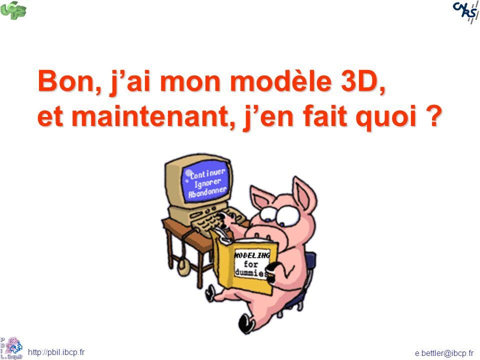 e.bettler@ibcp.fr http://pbil.ibcp.fr Bon, jai mon modèle 3D, et maintenant, jen fait quoi ?