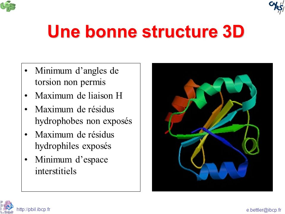 e.bettler@ibcp.fr http://pbil.ibcp.fr Une bonne structure 3D Minimum dangles de torsion non permis Maximum de liaison H Maximum de résidus hydrophobes non exposés Maximum de résidus hydrophiles exposés Minimum despace interstitiels