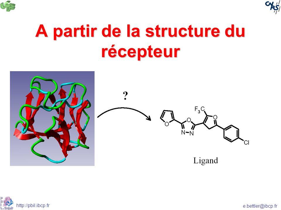 e.bettler@ibcp.fr http://pbil.ibcp.fr A partir de la structure du récepteur