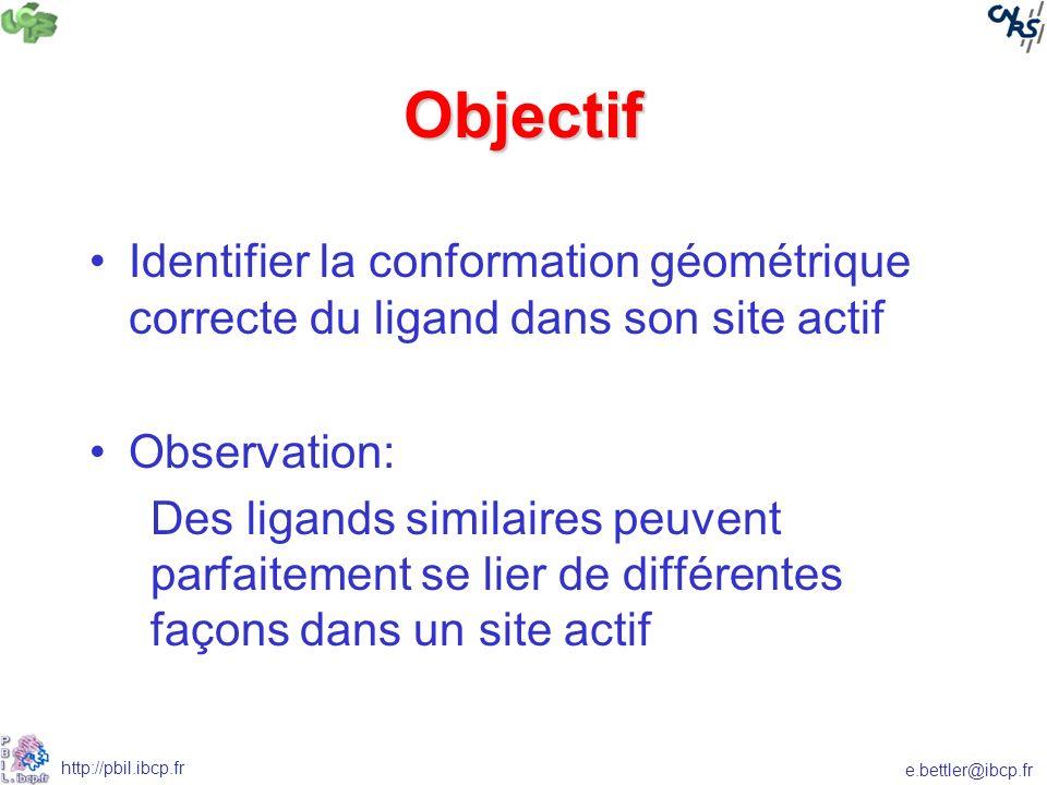 e.bettler@ibcp.fr http://pbil.ibcp.fr Objectif Identifier la conformation géométrique correcte du ligand dans son site actif Observation: Des ligands similaires peuvent parfaitement se lier de différentes façons dans un site actif