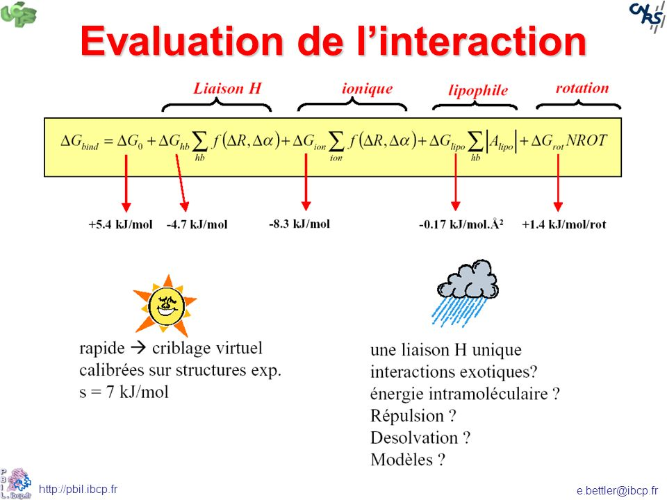 e.bettler@ibcp.fr http://pbil.ibcp.fr Evaluation de linteraction