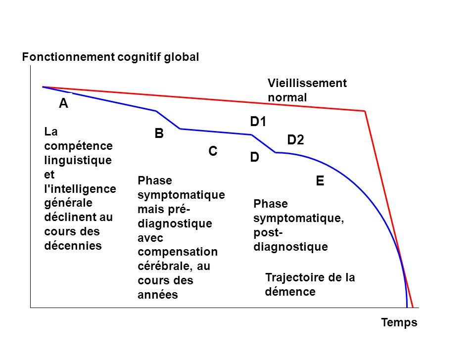 Fonctionnement cognitif global Temps Vieillissement normal La compétence linguistique et l'intelligence générale déclinent au cours des décennies A B