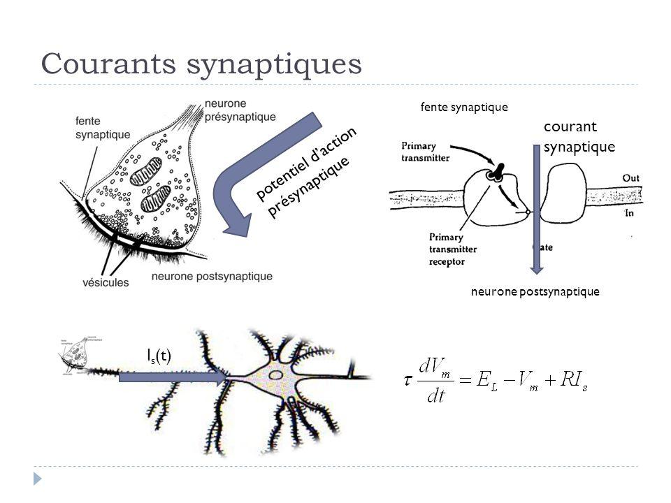 Courants synaptiques potentiel daction présynaptique courant synaptique neurone postsynaptique fente synaptique I s (t)