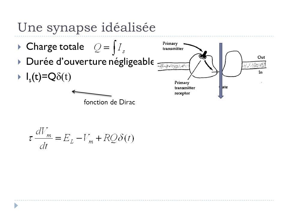 Une synapse idéalisée Charge totale Durée douverture négligeable I s (t)=Q δ(t) fonction de Dirac