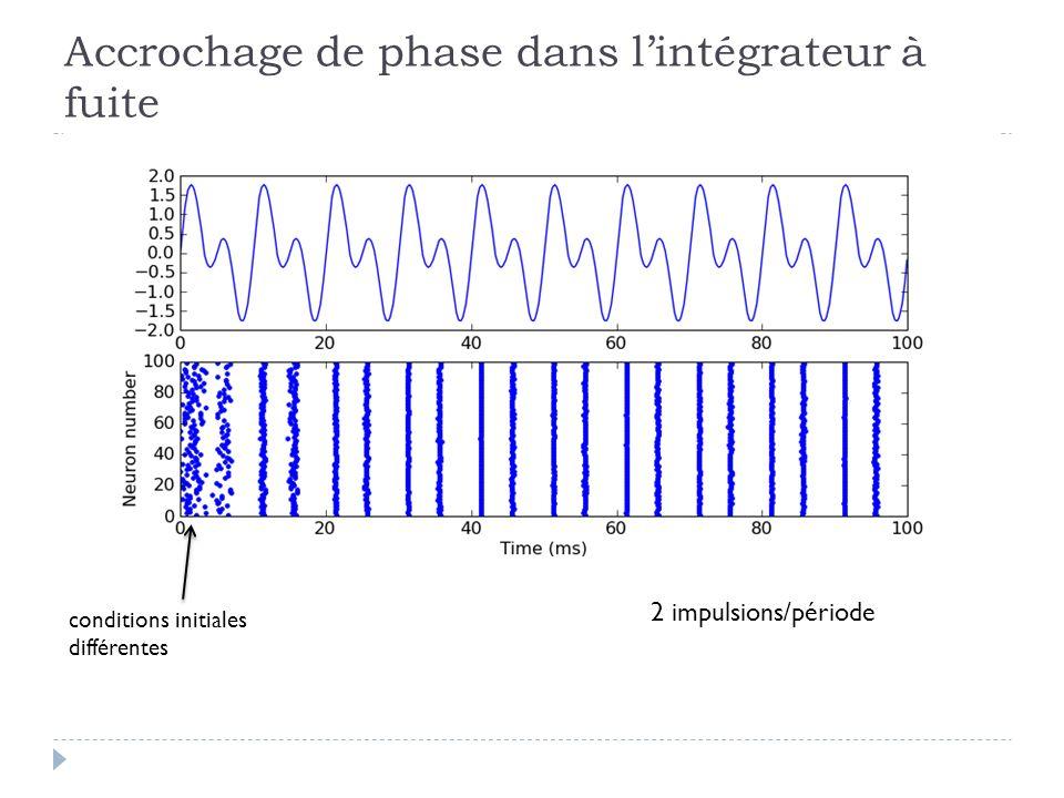 Accrochage de phase dans lintégrateur à fuite conditions initiales différentes 2 impulsions/période
