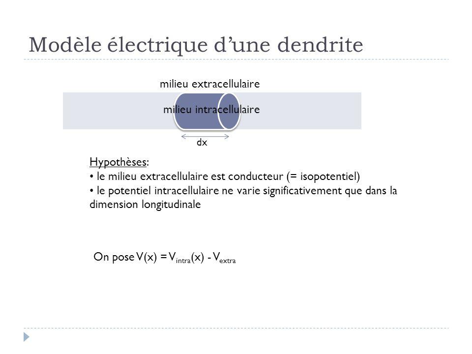 Modèle électrique dune dendrite milieu extracellulaire milieu intracellulaire Hypothèses: le milieu extracellulaire est conducteur (= isopotentiel) le potentiel intracellulaire ne varie significativement que dans la dimension longitudinale dx On pose V(x) = V intra (x) - V extra