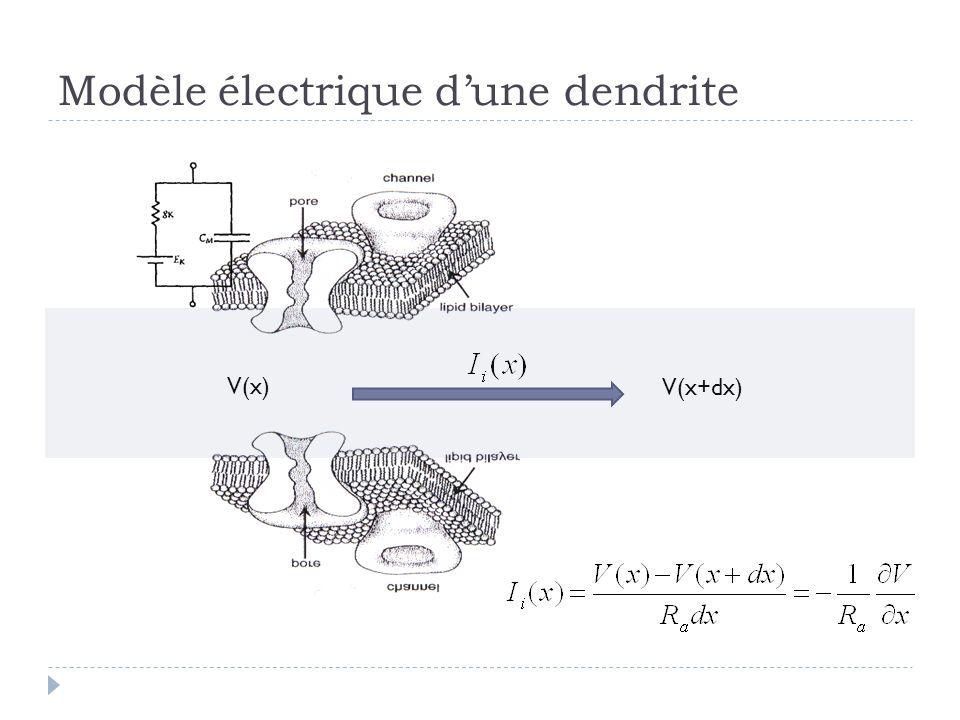 Modèle électrique dune dendrite V(x) V(x+dx)