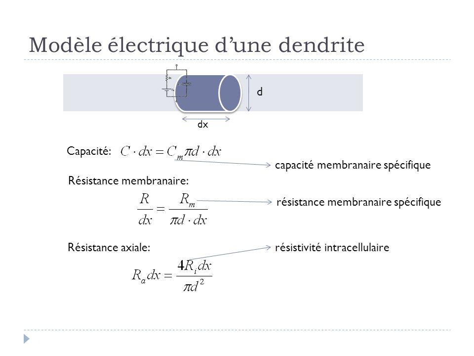 Modèle électrique dune dendrite dx Capacité: d capacité membranaire spécifique Résistance membranaire: résistance membranaire spécifique Résistance axiale:résistivité intracellulaire