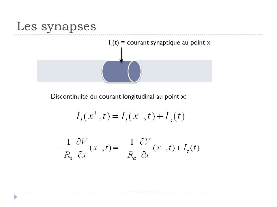 Les synapses I s (t) = courant synaptique au point x Discontinuité du courant longitudinal au point x: