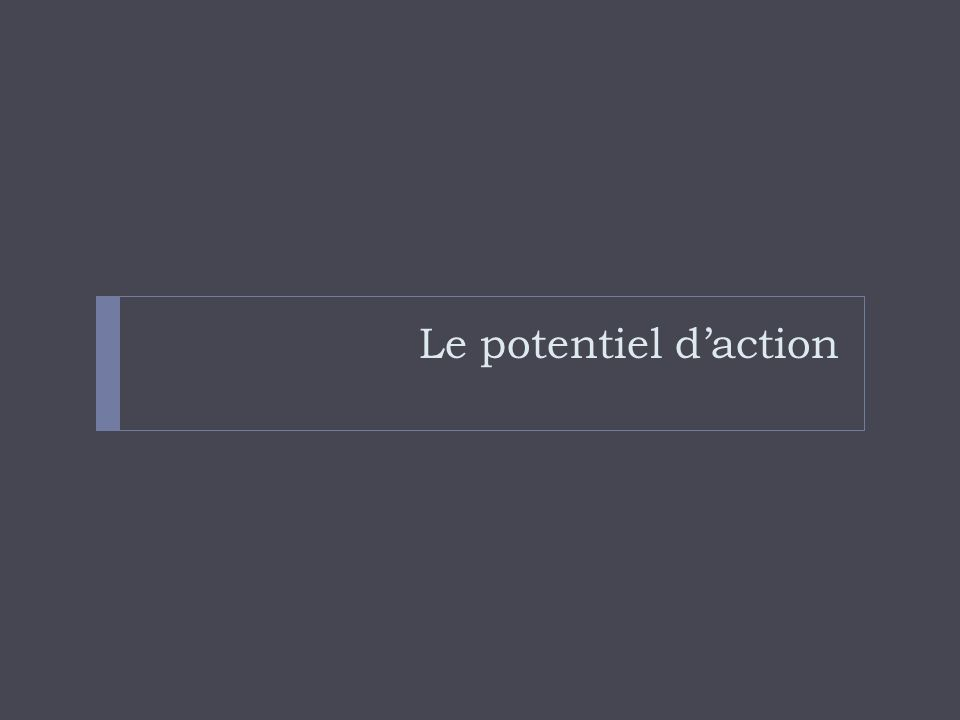 Le potentiel daction