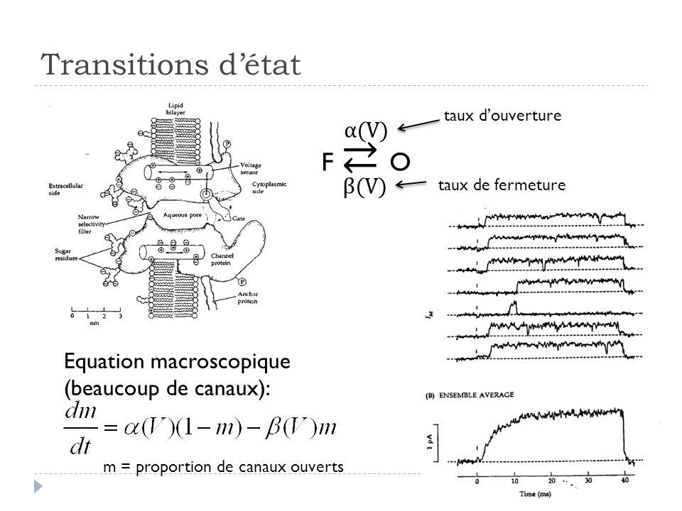 Transitions détat F O α(V) β(V) Equation macroscopique (beaucoup de canaux): taux douverture taux de fermeture m = proportion de canaux ouverts