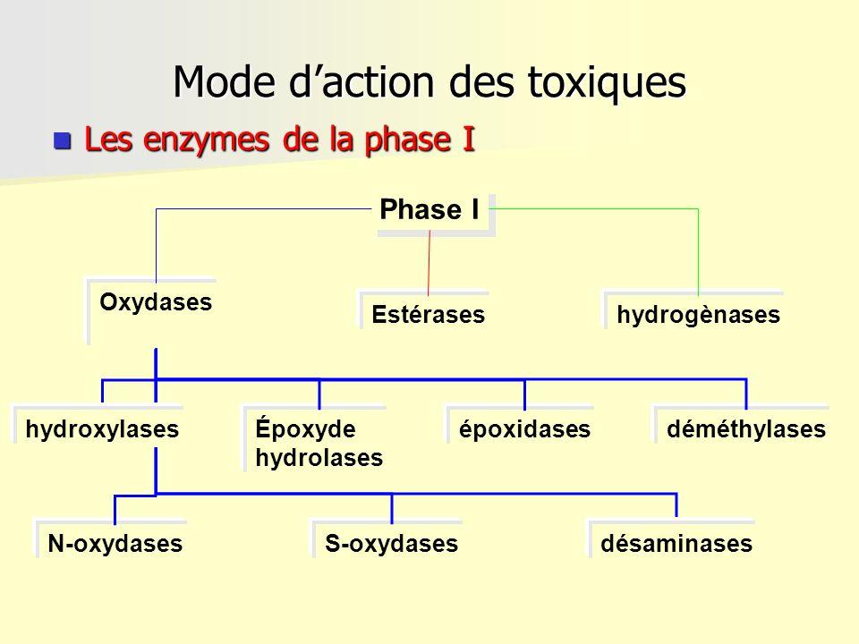 Mode daction des toxiques Les enzymes de la phase I Les enzymes de la phase I Phase I hydrogènasesEstérases Oxydases N-oxydases déméthylasesépoxidases