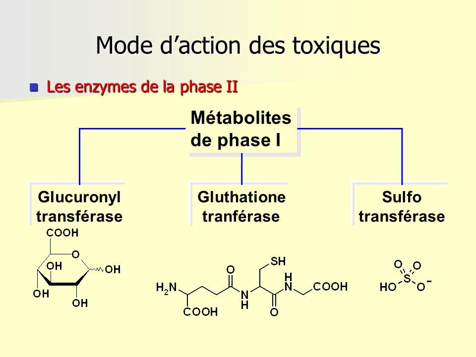 Mode daction des toxiques Les enzymes de la phase II Les enzymes de la phase II Métabolites de phase I Métabolites de phase I Sulfo transférase Glutha