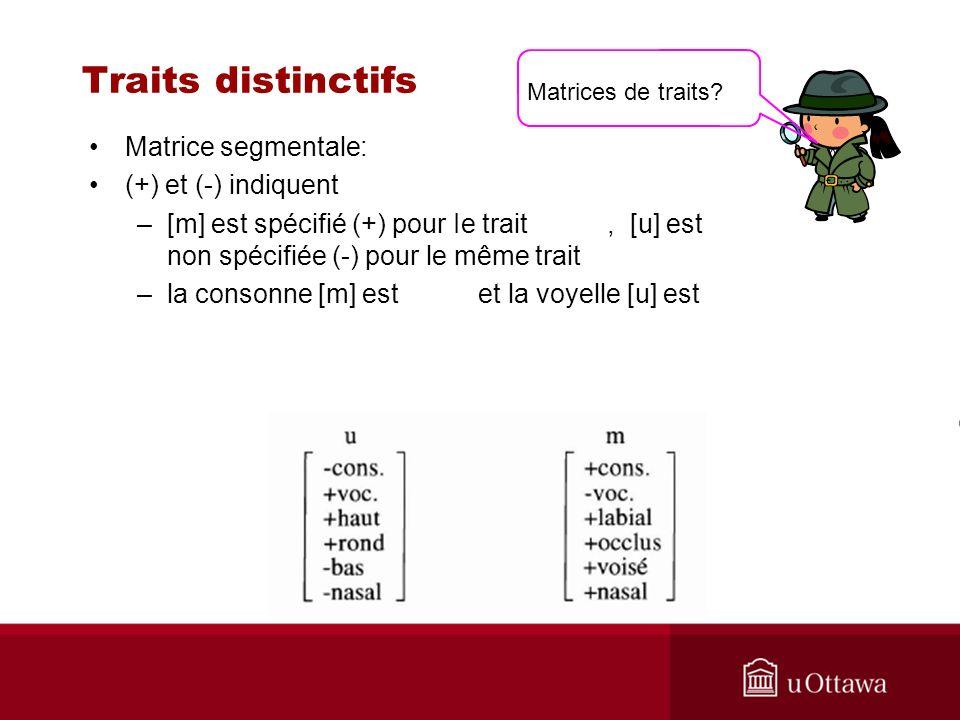 Traits distinctifs Matrice segmentale: (+) et (-) indiquent –[m] est spécifié (+) pour Ie trait, [u] est non spécifiée (-) pour le même trait –la consonne [m] est et la voyelle [u] est Matrices de traits?
