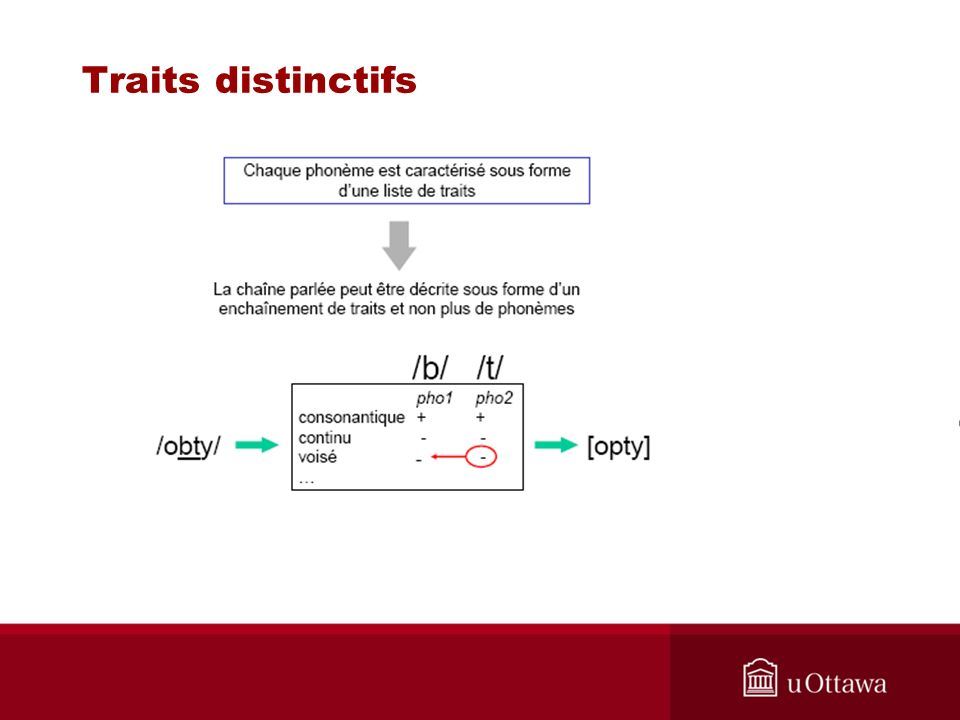 Traits distinctifs