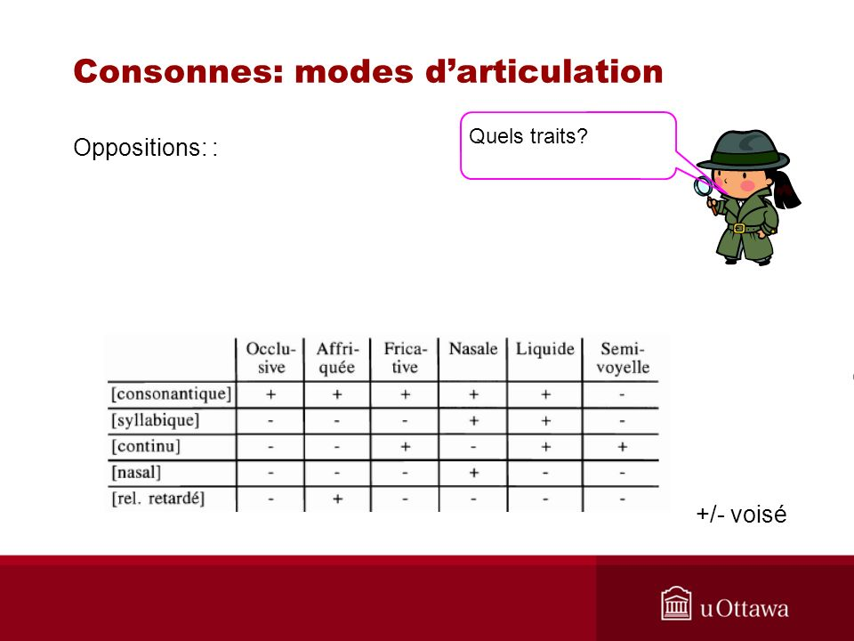 Consonnes: modes darticulation Oppositions: : +/- voisé Quels traits?
