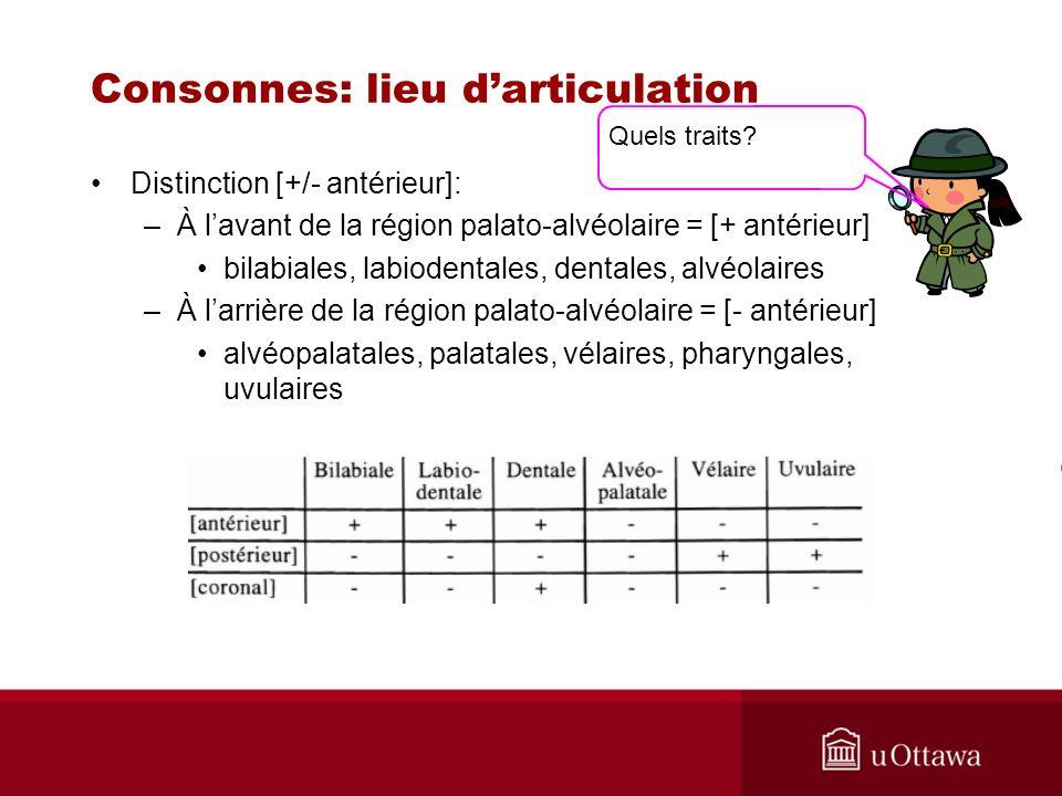 Consonnes: lieu darticulation Distinction [+/- antérieur]: –À lavant de la région palato-alvéolaire = [+ antérieur] bilabiales, labiodentales, dentales, alvéolaires –À larrière de la région palato-alvéolaire = [- antérieur] alvéopalatales, palatales, vélaires, pharyngales, uvulaires Quels traits?
