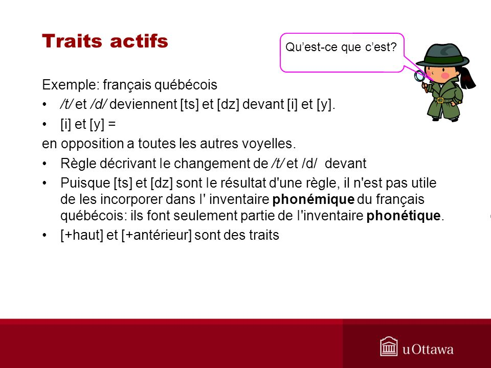 Traits actifs Exemple: français québécois /t/ et /d/ deviennent [ts] et [dz] devant [i] et [y].