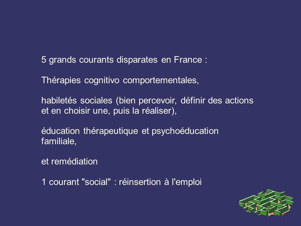 5 grands courants disparates en France : Thérapies cognitivo comportementales, habiletés sociales (bien percevoir, définir des actions et en choisir une, puis la réaliser), éducation thérapeutique et psychoéducation familiale, et remédiation 1 courant social : réinsertion à l emploi