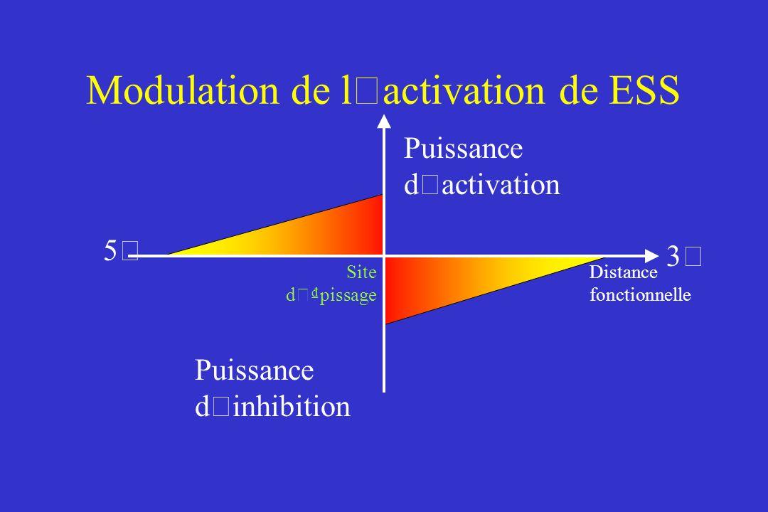 Modulation de l ' activation de ESS Puissance d ' activation Puissance d ' inhibition Distance fonctionnelle Site d ' pissage 5'5' 3'3'