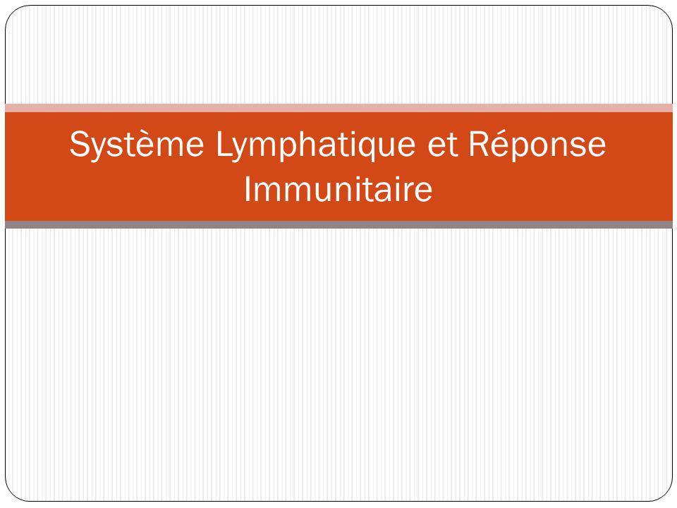 Revue de test - Système Lymphatique Tu dois connaître la cause d une maladie et comment il est possible d absorber des bactéries et des virus.