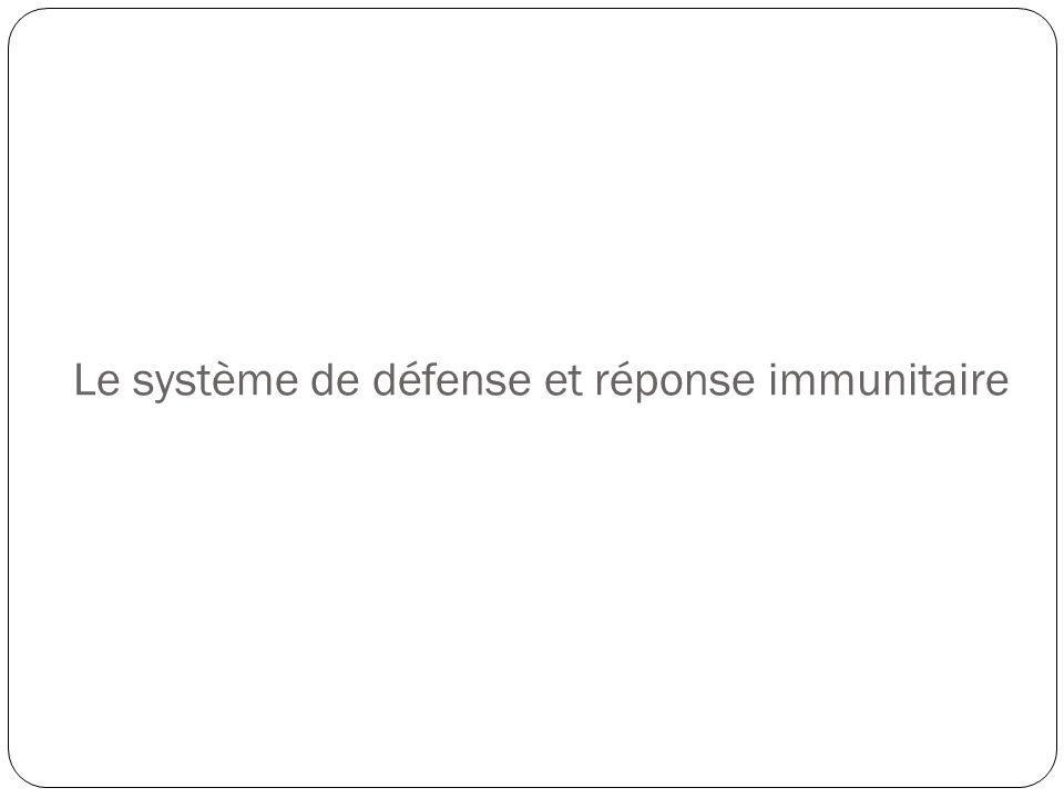 Le système de défense et réponse immunitaire