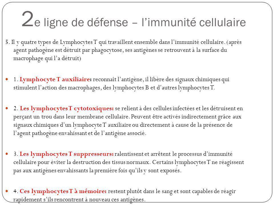 2 e ligne de défense – limmunité cellulaire 5. Il y quatre types de Lymphocytes T qui travaillent ensemble dans limmunité cellulaire. (après agent pat