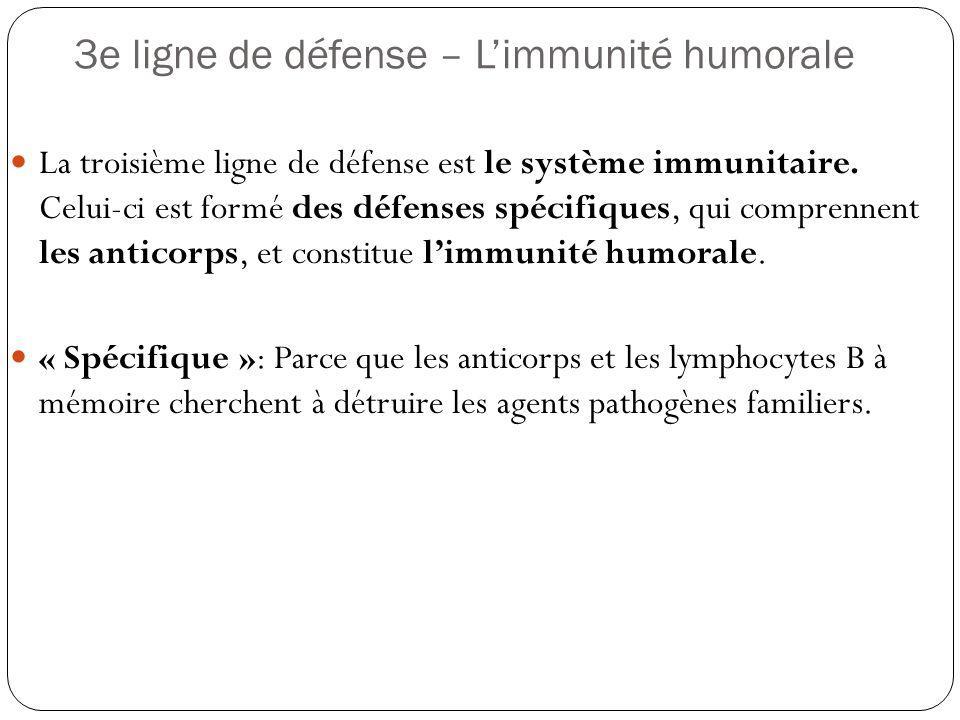 3e ligne de défense – Limmunité humorale La troisième ligne de défense est le système immunitaire. Celui-ci est formé des défenses spécifiques, qui co